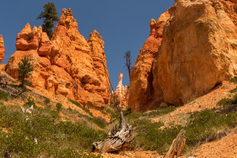 Bryce Canyon NP Navajo Loop Trail